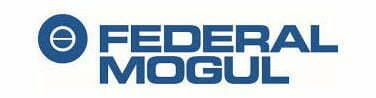 Federal-Mogul Goetze (India) Ltd